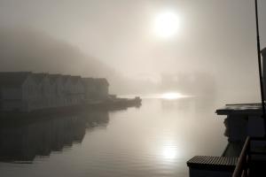 foginthefjord